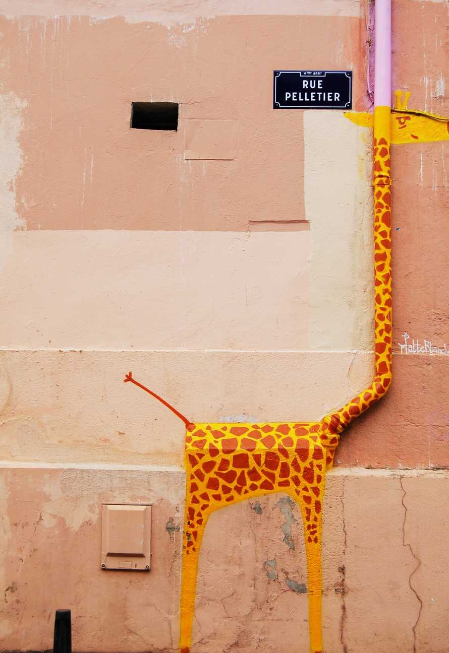Dynamically-typed giraffe roaming the streets of Paris. Photo by Chris Barbalis.